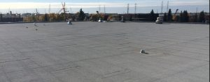 Flat roof system completed at Leduc